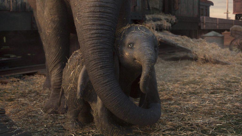 Dumbo trailer italiano hd youtube